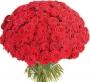 Букет из роз Истинная любовь, магазин Valencia