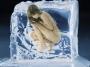 Холодное обертывание против целлюлита в центре косметологии Beauty Science!